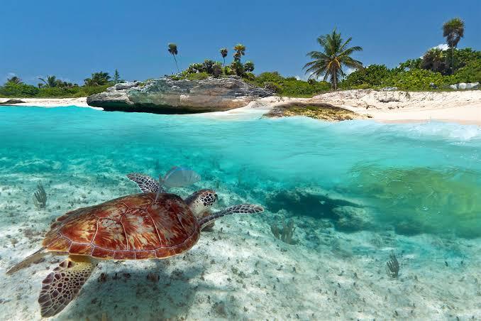 El mejor clima en Riviera Maya